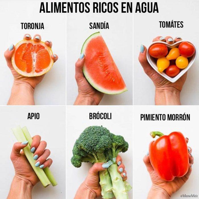 alimentos ricos en agua