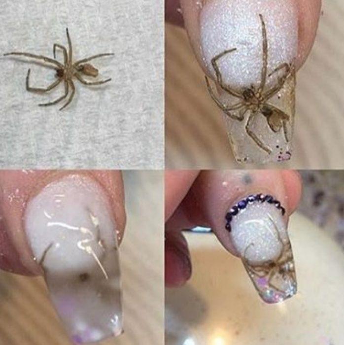 uñas de araña