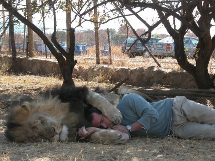 león abrazando a kevin richardson