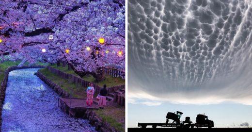 Cover Fotos que prueban que la realidad supera a la ficción
