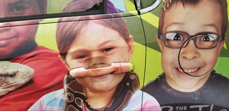 calcomanía de niños en un coche