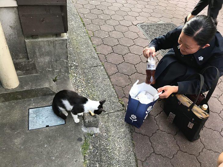 Una mujer comparte su comida con un gatito de la calle