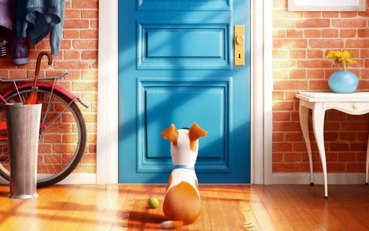 perrito atrás de la puerta