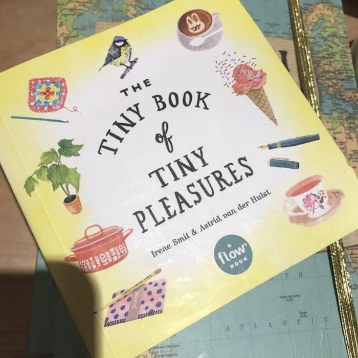 libro de los pequeños placeres