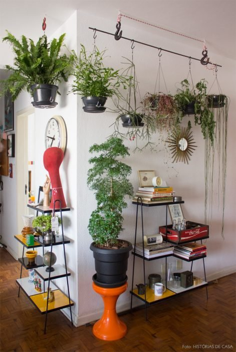 decoración con plantas casa hogar
