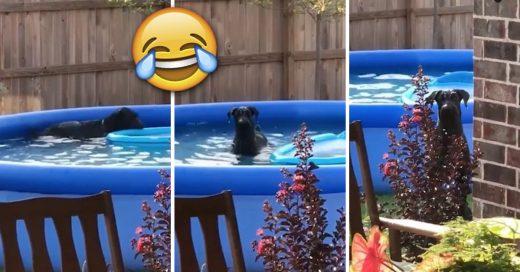 Cover Pensó que nadie lo vería y se dio un baño en la piscina