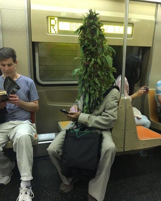 hombre en el metro con un arbusto en la cara