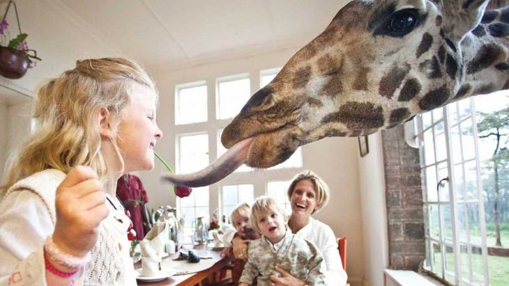 restaurante The Girafe Manor