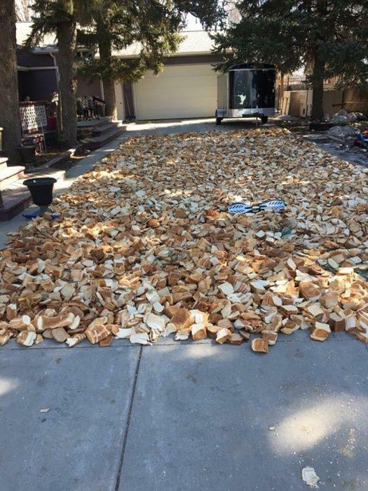 pan tirado en la calle