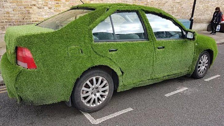auto con musgo