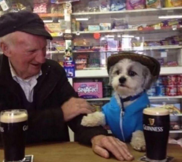 perrito en un bar con un viejito