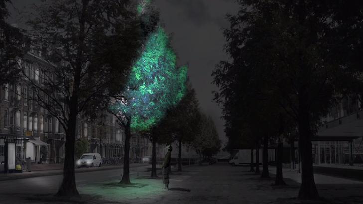 calles bioluminiscentes