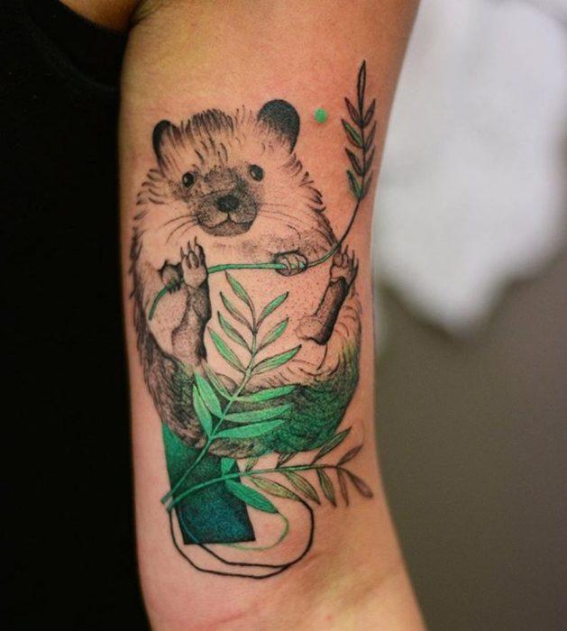 tatuaje de tierno erizo