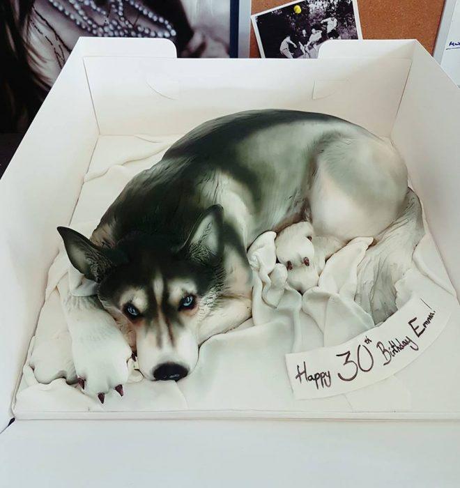 perrito husky pastel