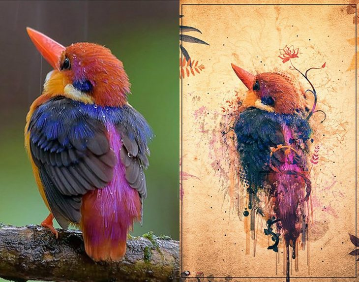 Photoshop de ilustración de un pajarito