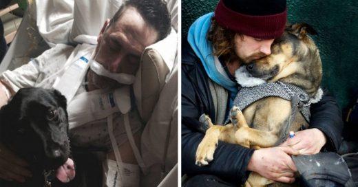 Cover Amor incondicional de los perros a sus dueños