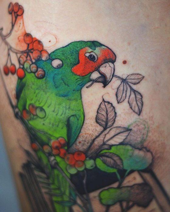 tatuaje de un perico de bellos colores