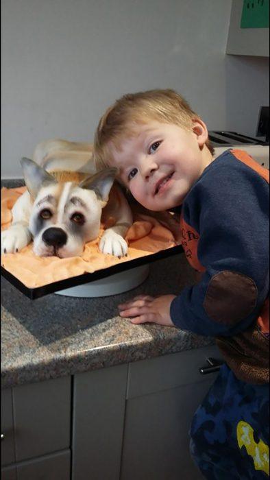 niño y pastel de perrito