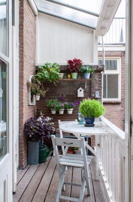 planas en un balcón