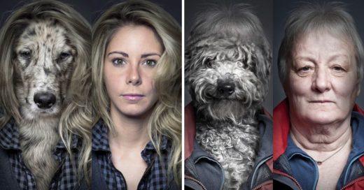 Cover Fotógrafo viste a los perros igual que sus dueños