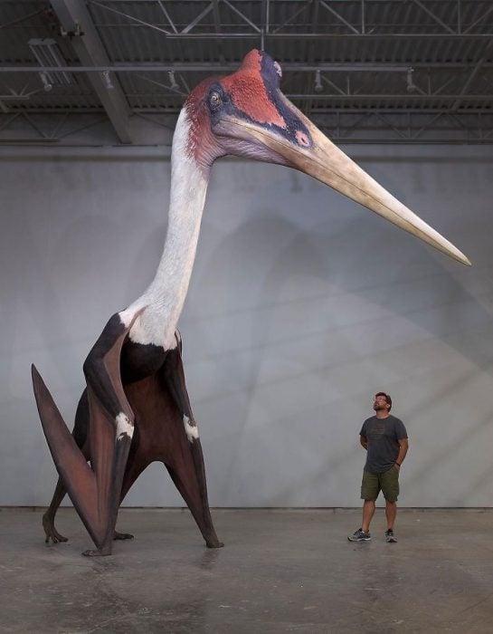 Quetzalcoatlus, el animal volador más grande de la historia