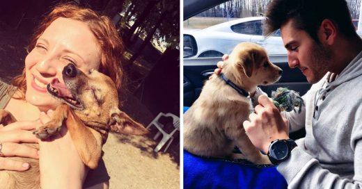 Cover Lindas imágenes de perritos que conocieron a sus humanos por primera vez