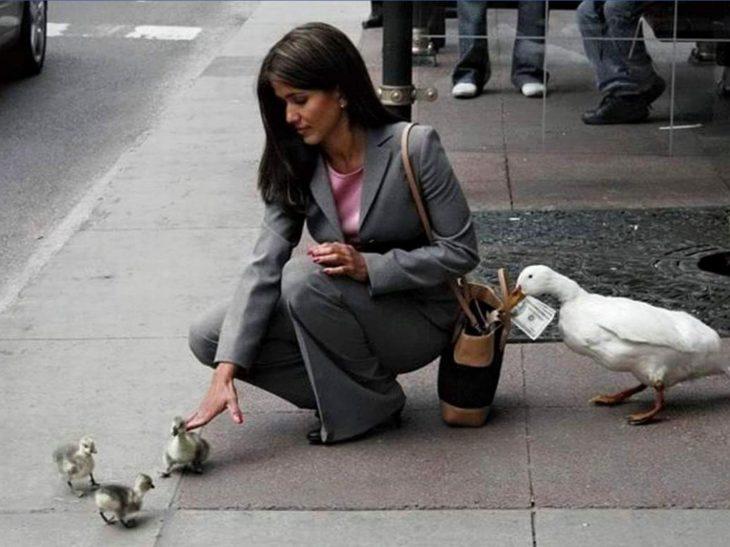 patos robando a una mujer