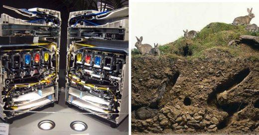 Cover Fotos de objetos cotidianos mostrados desde otro ángulo
