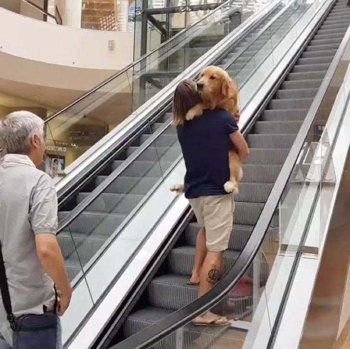 dueño perro cargandolo recreoviral.com