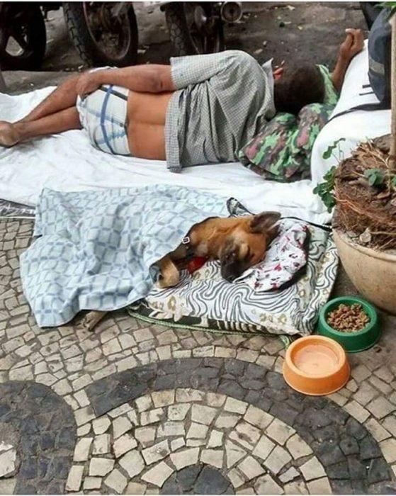 indigente y su perrito