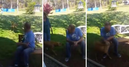 Cover Hombre baja 25 kilos y su perro lo desconoce