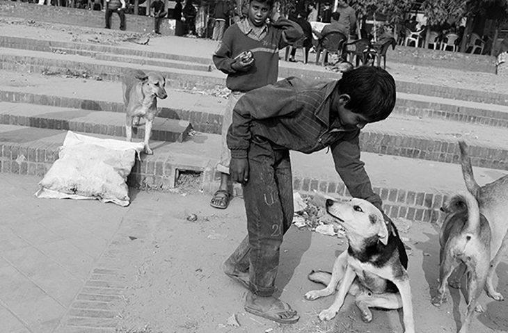 niño acariciando a un perro callejero