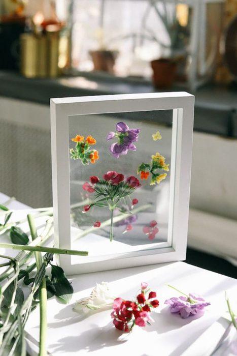 cuadro con flores naturales