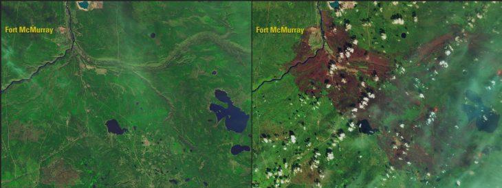 Incendio en Alberta, Canadá, destruyó gran parte del bosque : 2015 - 2016