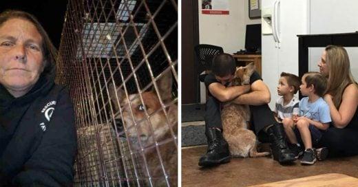 Cover Luego de 28 días perdida en el bosque, esta perrita regresó a casa sana y salva