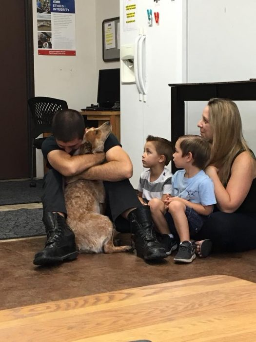 perrito se encontró con su familia