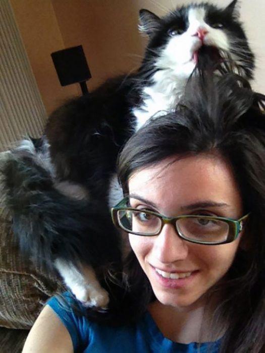 gato comiendo cabello de humana