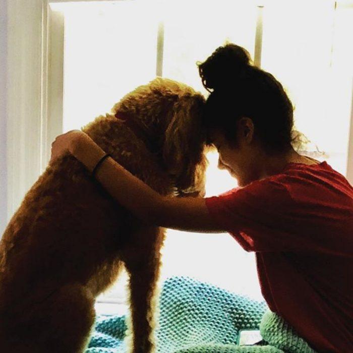 perrito consolando a humana