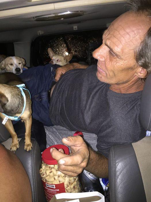 hombre con sus perros