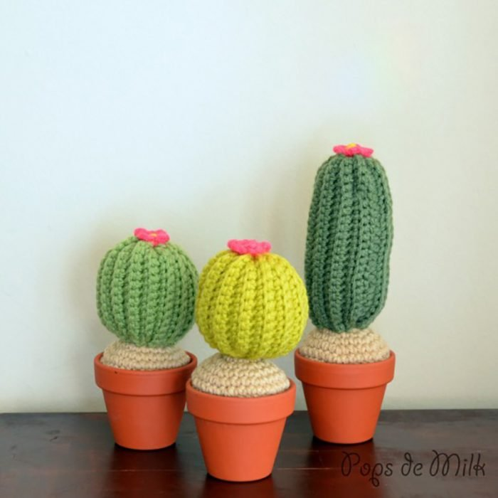 cactus tejidos