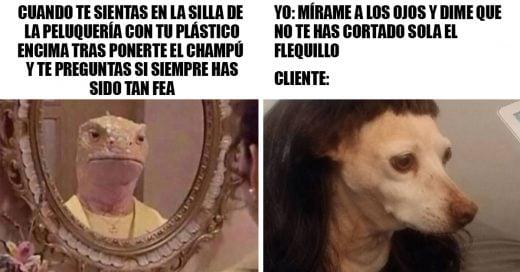 Cover Divertidos memes que te harán sentir pena por tu peluquera