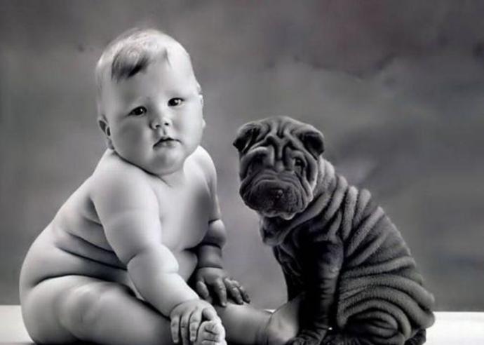 animales que se parecen a personas