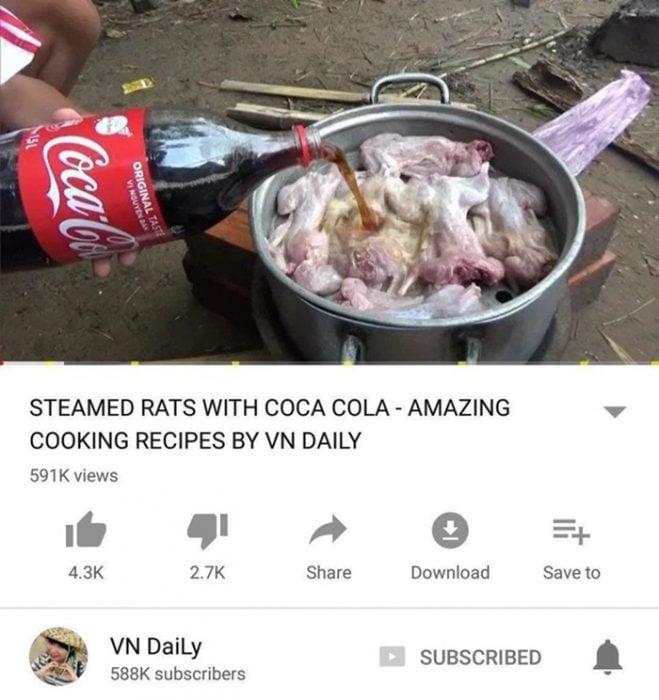 ratas con Coca-Cola