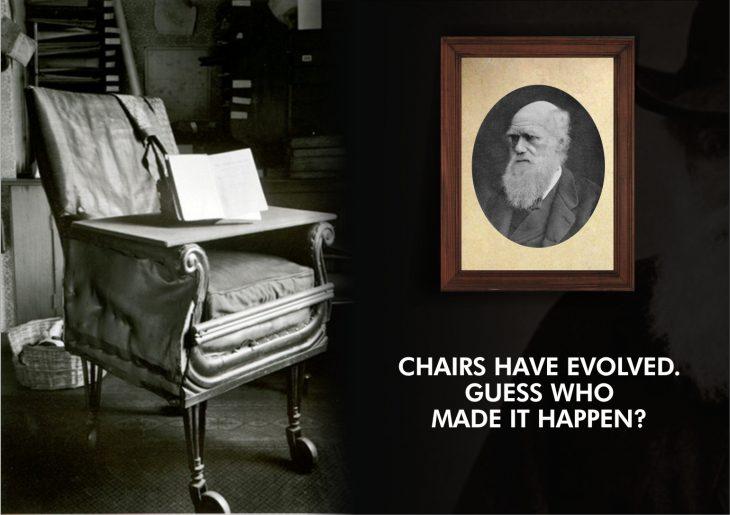 darwin sillas con ruedas