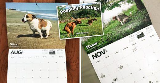 Cover Calendario de perros defecando en entornos pintorescos