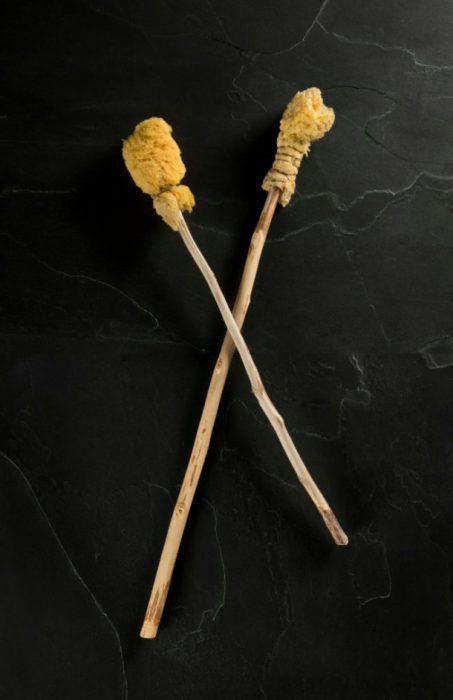 esponja en un palo