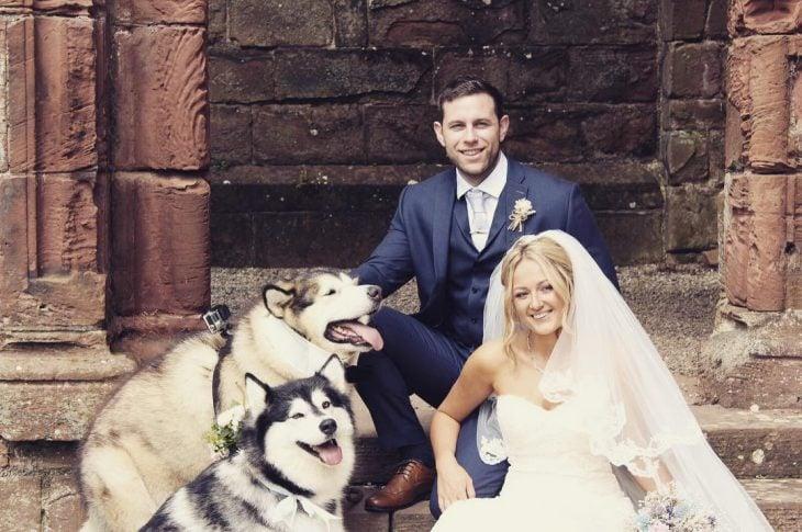 boda con perritos