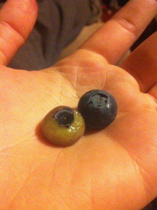 Frutas encueradas