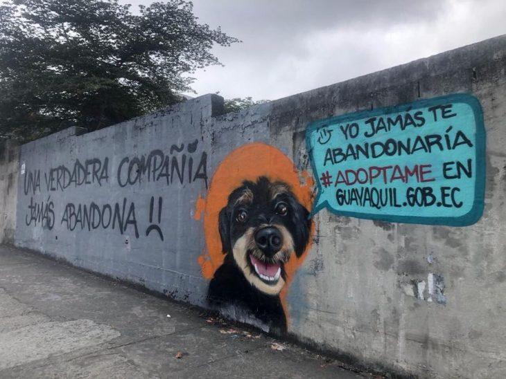 perrito bonito graffitti