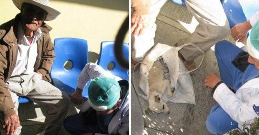 Cover Medicos atienden a un cachorro que llevaba un anciano
